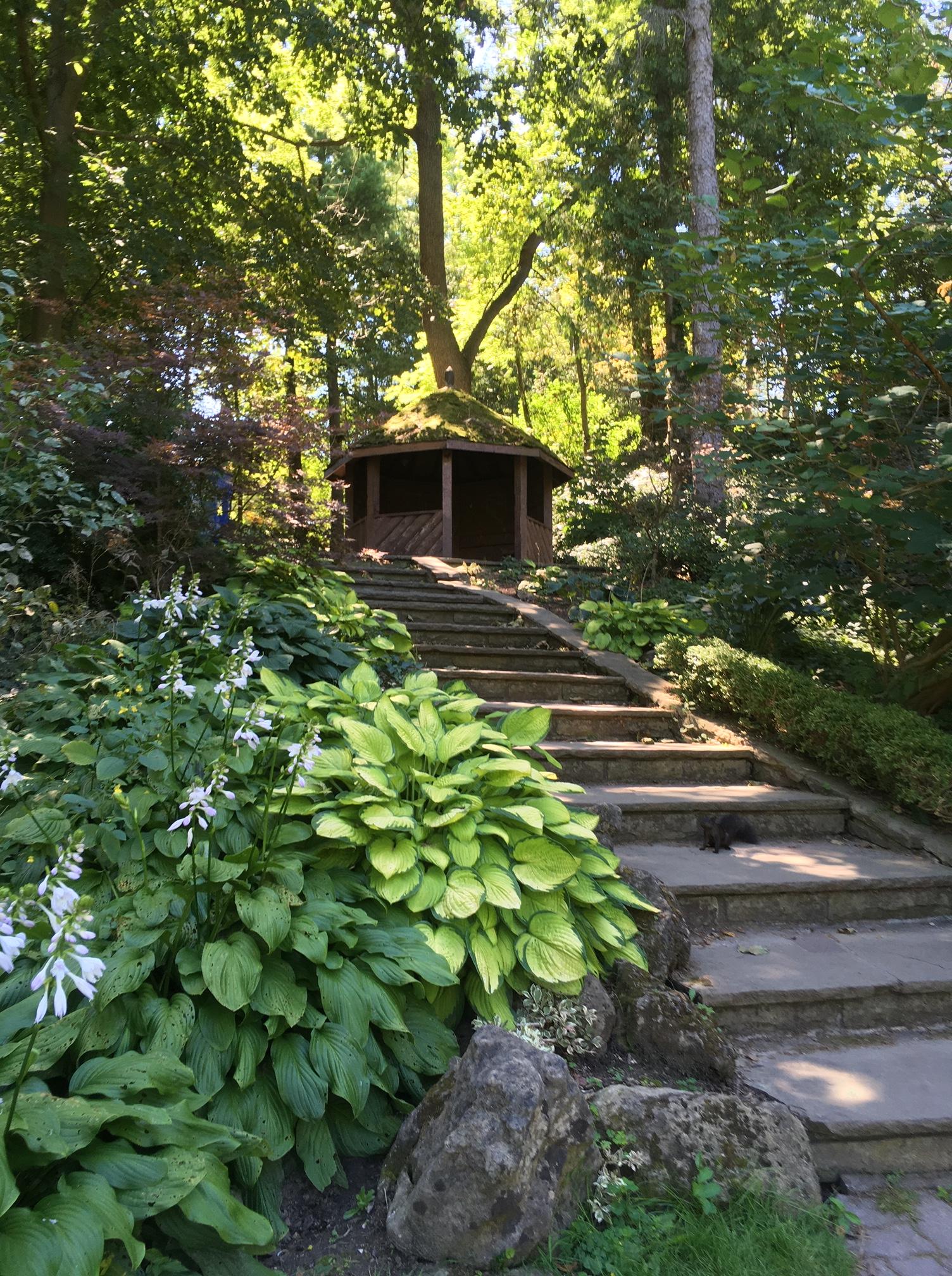 Toronto Botanical Garden steps