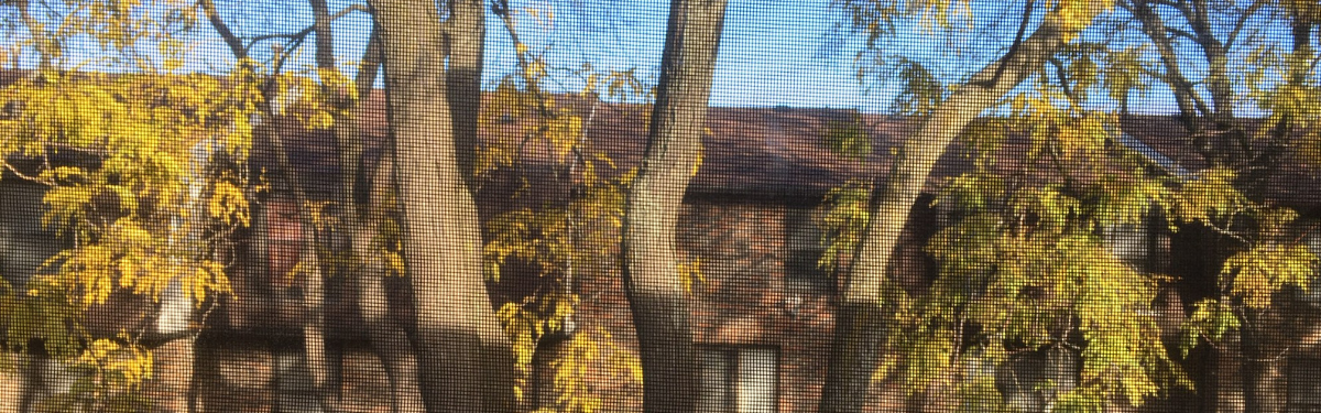 view of houses through a screen window